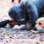 'बेघरों, भिखारियों को भी देश के लिए कुछ काम करना चाहिए, सबकुछ उन्हें राज्य नहीं दे सकता', बॉम्बे HC ने कहा